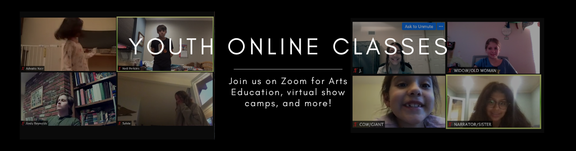 Youth Zoom Classes